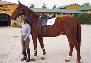 Review: East Coast Equestrian