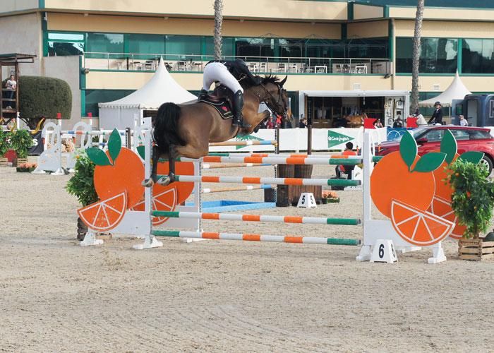 caballo saltando obstaculo de naranjas en el ces valencia tour