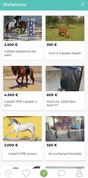 vista de la página principal de la apps ecuestres para el móvil Wallahorse