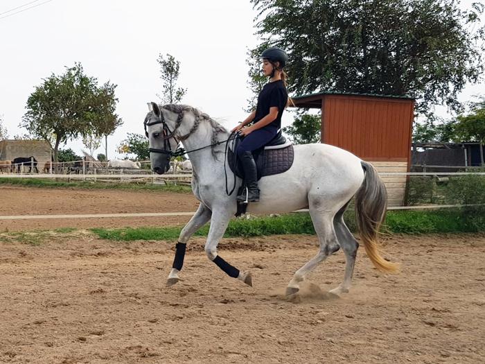 laia galopando con cali, protagonistas de mi caballo y yo
