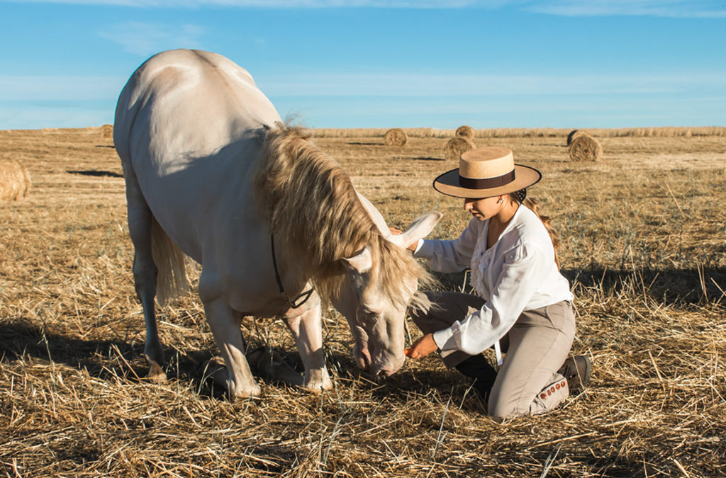 Mi caballo y yo: Paloma y Drakaris
