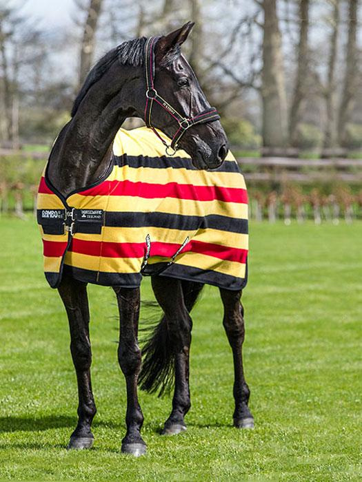 caballo con manta polar