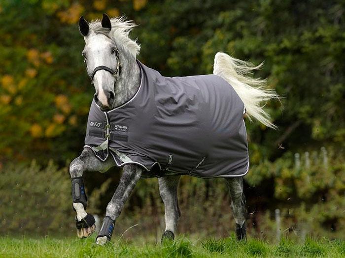 caballo con manta de exterior