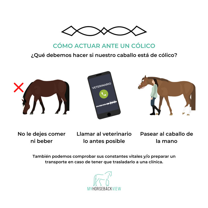 Cómo actuar ante un cólico de un caballo