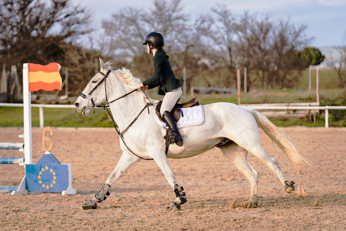 Parce, caballo blanco galopando con Silvia, amazona, en una competición