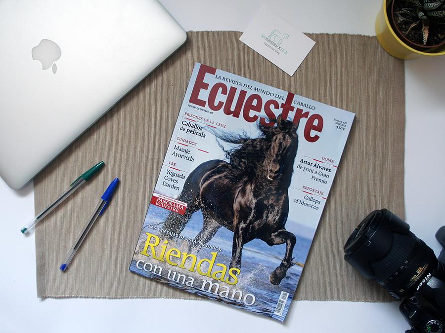 Novedades en My Horseback View